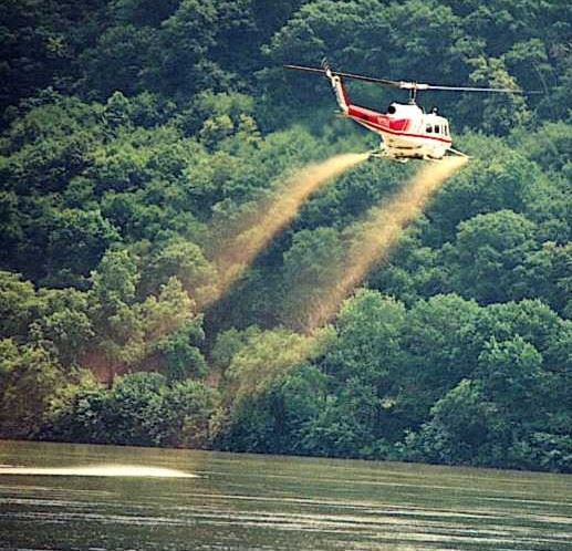 Helicopter spraying river for black fly larva